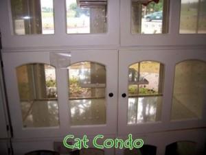 catcondo-300x226